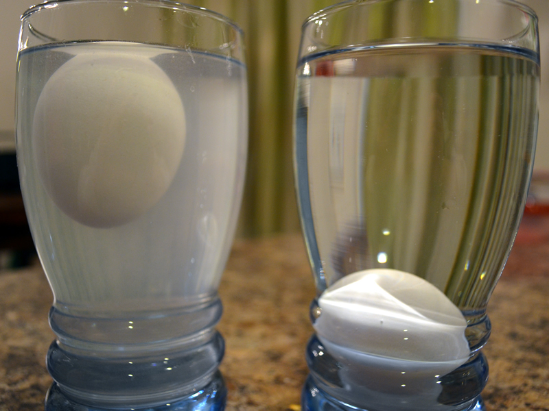 how much salt does it take to float an egg An egg sinks to the bottom of the glass when it is immersed in a fresh - clean water when throw a lot of salt to water and dissolve it in water - the egg will float on water.
