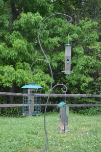 Birdfeeders in Animal Discovery Zoo