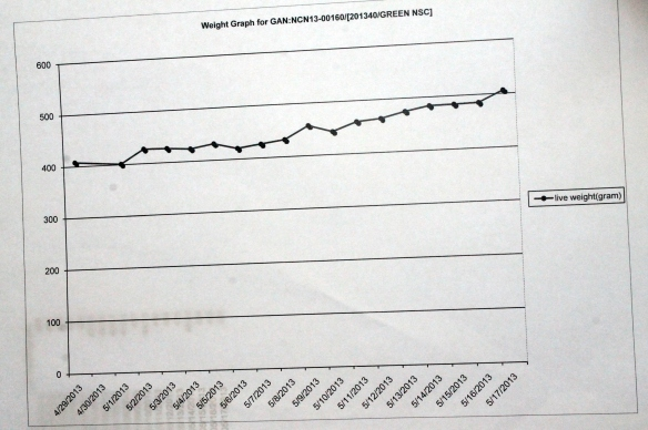 Weight-Growth Chart for Duke