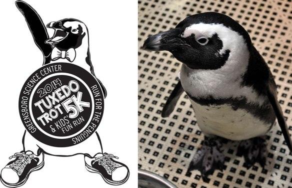 Posing for Tuxedo Trot Logo