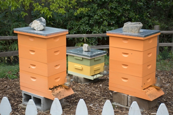 Three Hives