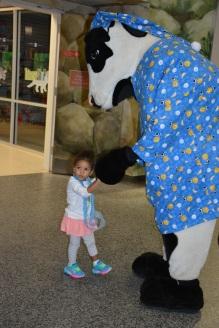 Pajama-Jam-Cows