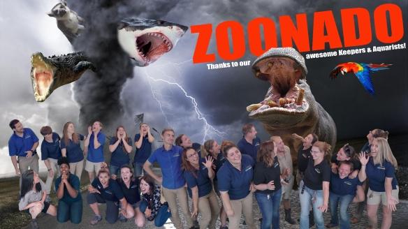 Zoonado FINAL