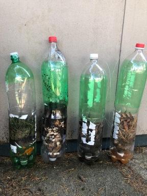 All Four Bottles